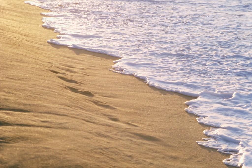 Granelli di sabbia lamatitadellostupore - Immagini di spongebob e sabbia ...